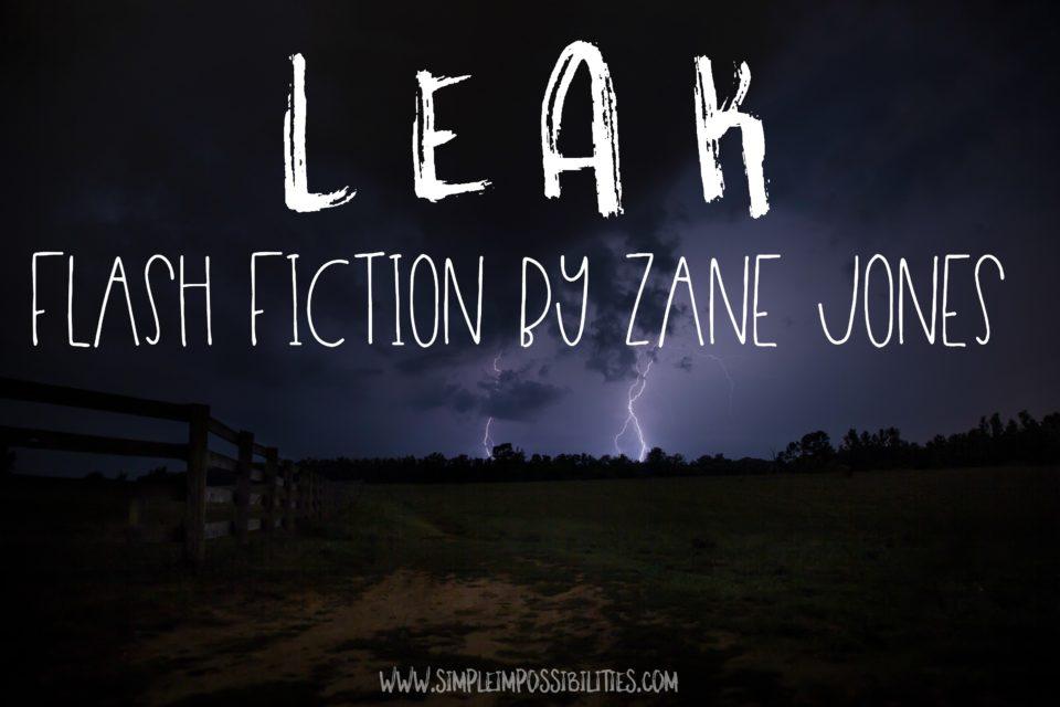 L e a k | flash fiction